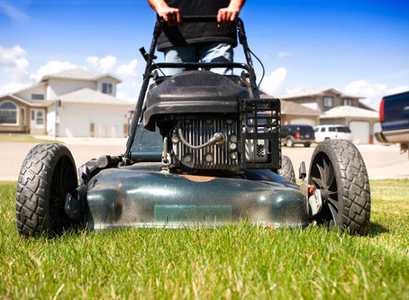Thinking of listing in the Spring? Prep your lawn now!!