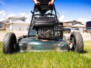 5 Ways to Keep Your Lawn Green and Beautiful