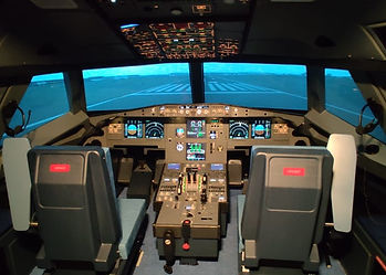 A320 PROFESSIONAL FBS