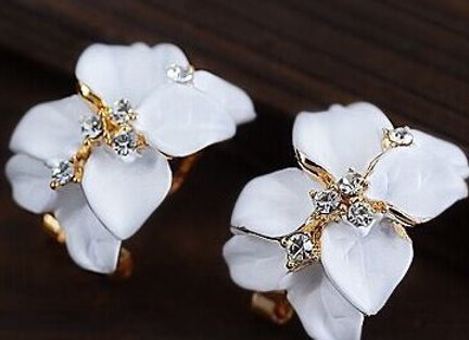 Crystal Rhinestone Floral Earrings With Gift Box