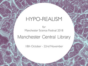 Hypo-Realism