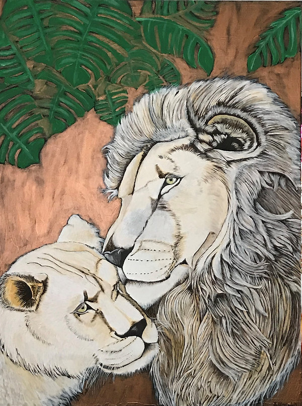 Love between white lions