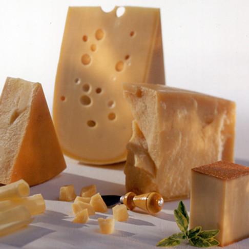 Svájci típusú, érlelt sajt készítő tanfolyam