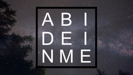 ABIDE(1).png