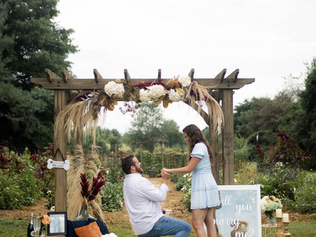 Skyler & Emily Proposal