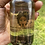 Thumbnail: Amethyst Infused head-to-toe Body Oil 4oz