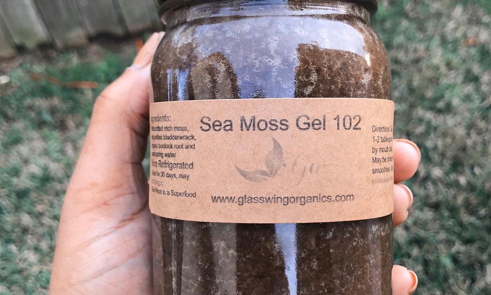 Sea Moss Gel 102