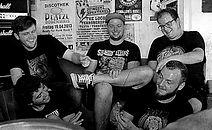 band_swallowsrose_edited.jpg