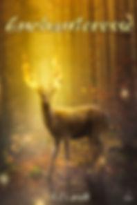 Enchanteresse-cover.jpg