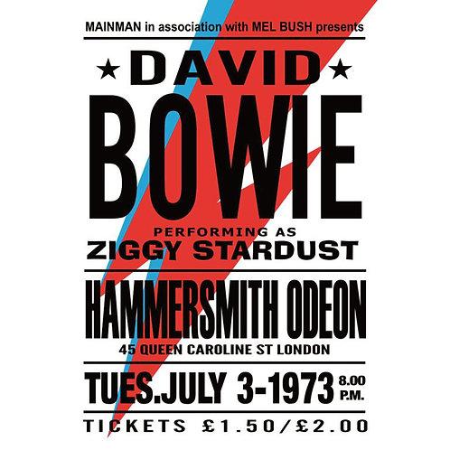Bowie World Tour - Canvas Print 40 x 60 cm