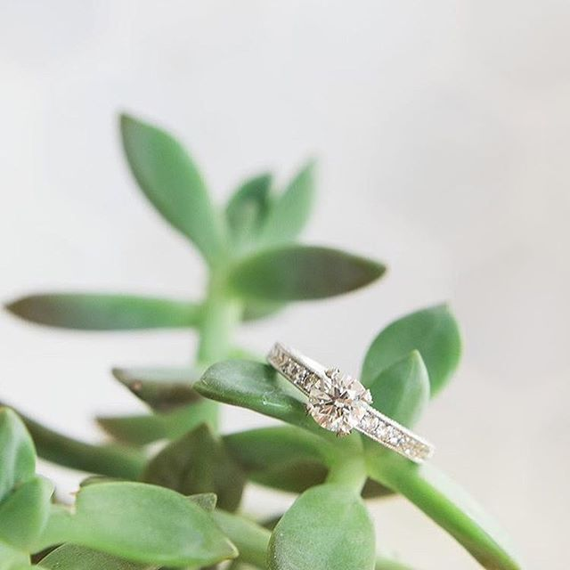 A sweet photo of a custom Bijoux by Amy ring shared by the lovely _caleyjoy Her husband, _humblebarb