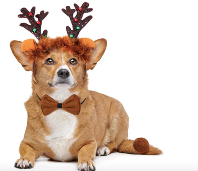 Christmas Costume for Dogs,Dog Reindeer Antlers Headband Tail and Pet Bow Tie Collar