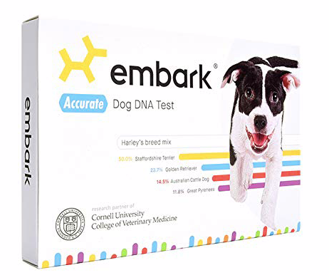 embark dog dan test