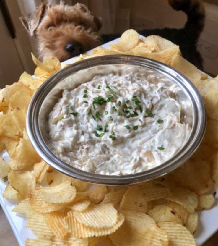 Barefoot Contessa Onion Dip with Chips Appetizer Idea from The Pickup Line