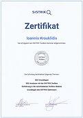 Sistrix SEO Zertifikat.jpeg