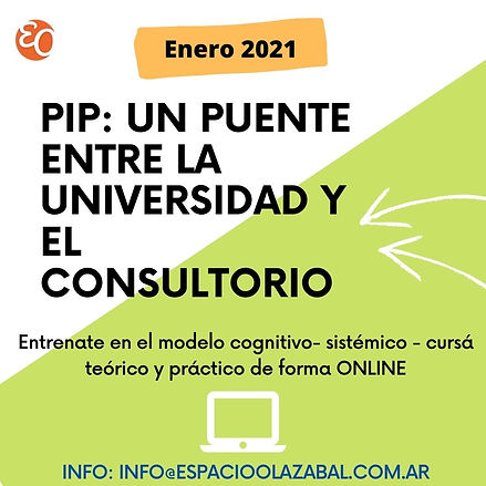 PIP_ UN PUENTE ENTRE LA UNIVERSIDAD Y EL