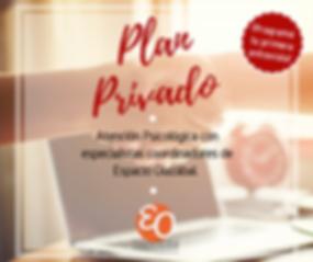 Plan Privado.png