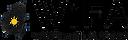 WiFA Logo.png