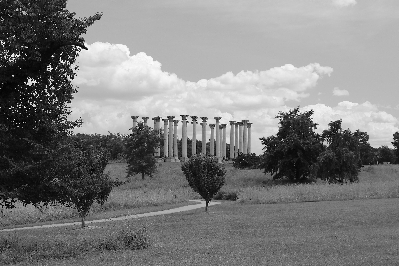 Original Capitol Columns