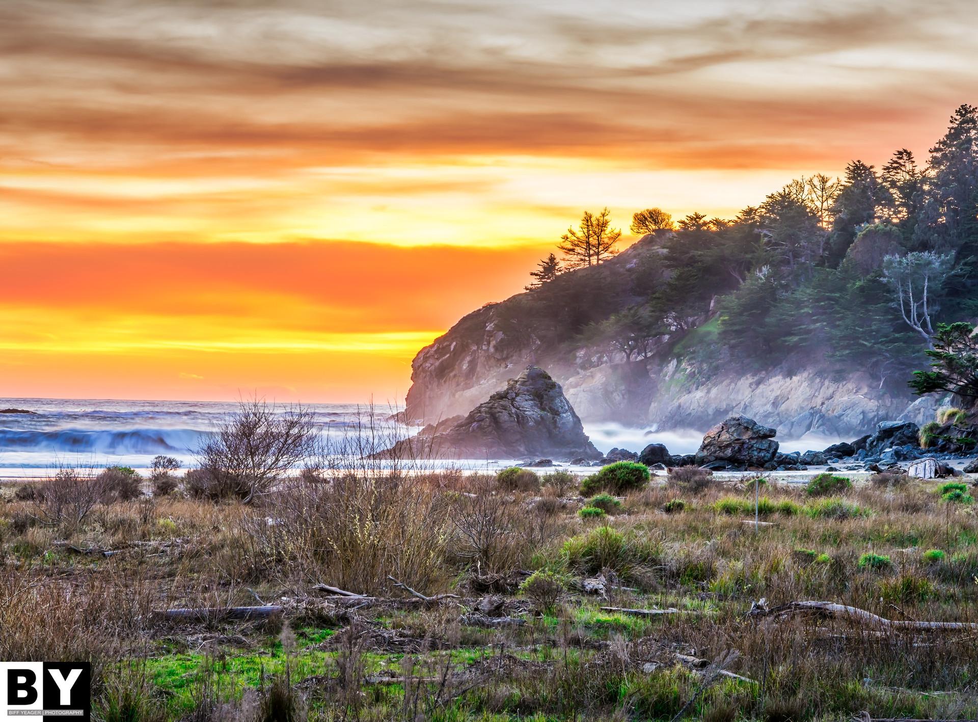 Muir Beach.jpg