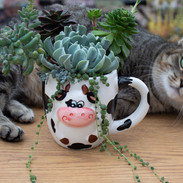 Tunia with a cow planter