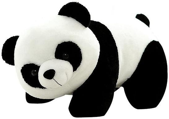 PANDA COILS