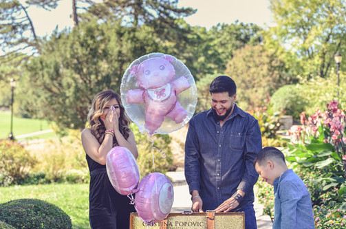 Loose Park, family session, baby reveal