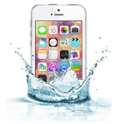 iPhone 5C Water Damage Repair