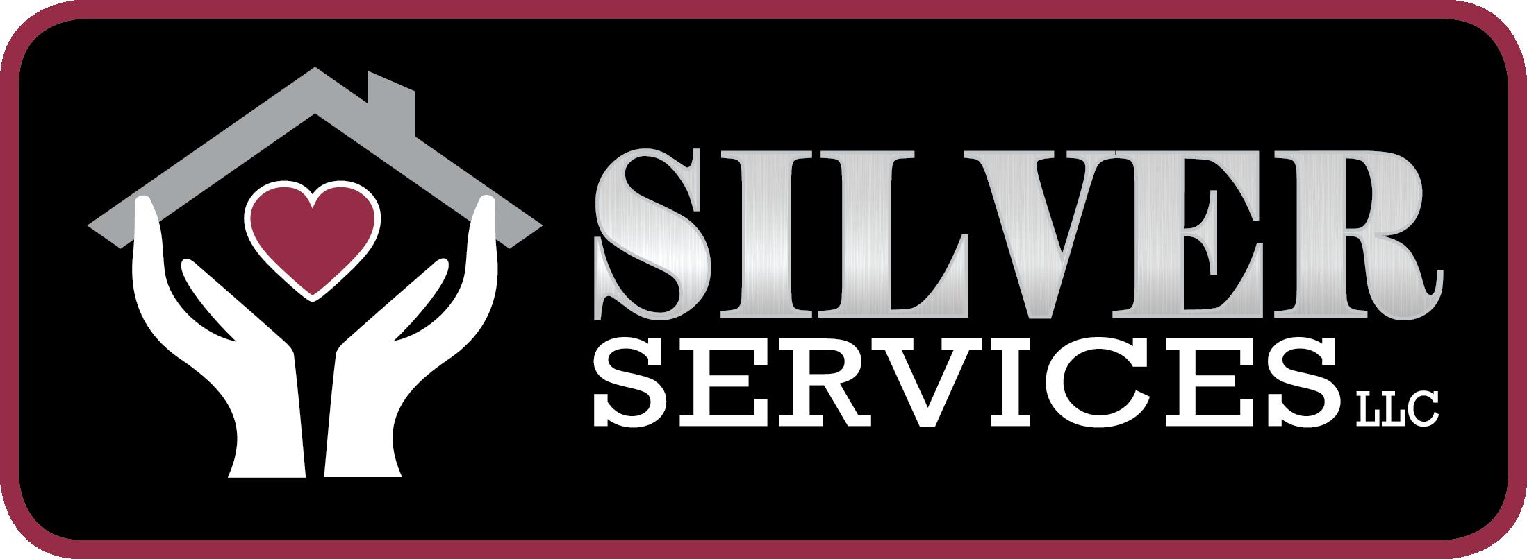 SilverServicesLogo_color_med