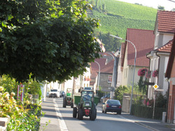 Stammheim Dorf