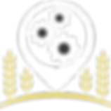 logo PSF.png