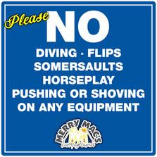 No Diving 36x36.jpg