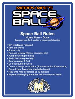 Space Ball Rules 36x48.jpg