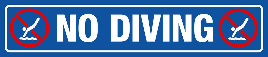 No Diving Sign 48x10.jpg