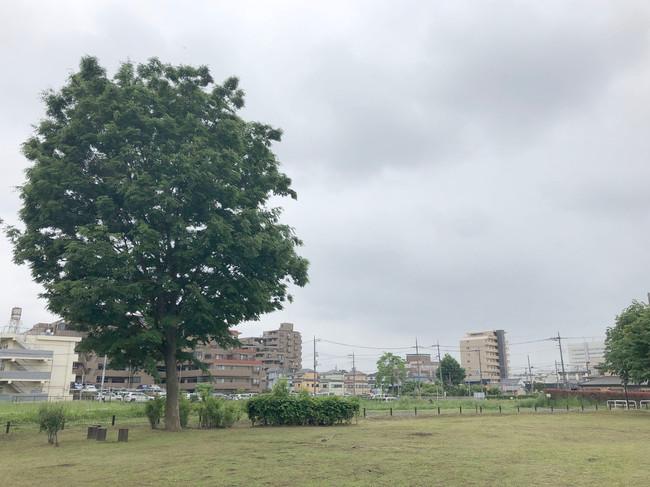 下野谷遺跡公園.jpg