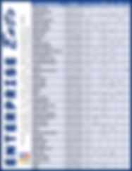 Blank 8.5 x 11 in-2.jpg