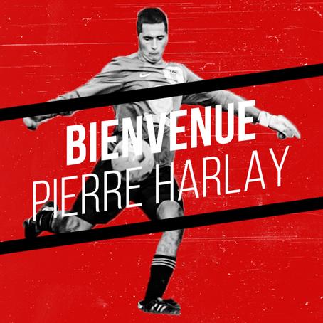 Pierre Harlay rejoint les RedWolves !