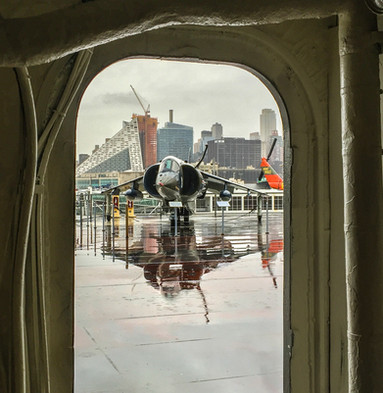 Harrier Reflection