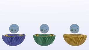 Set of 3 nanoparticles with drugs and barcoded dna encapsulated