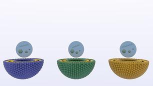 Scene 08_3Liposomes_10149.jpg