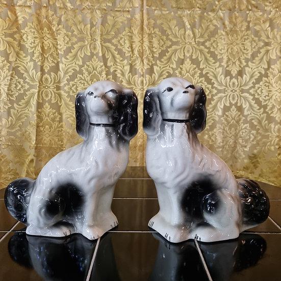 Twee eigenwijze hondjes