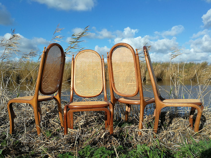 Webbing stoelen set