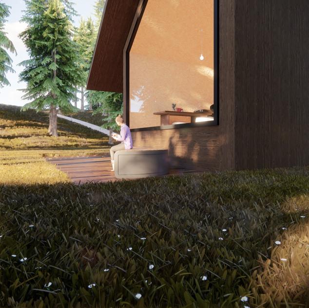 3d vizualizácia exteriéru drevodomu z tmavo hnedého dreva v lese vytvorená v programe Revit a Enscape 2