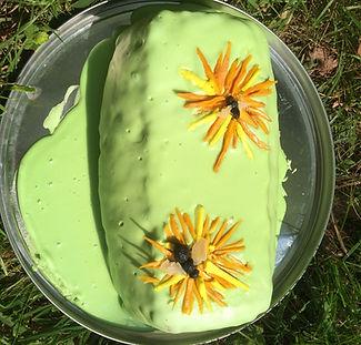 Lab cake.jpg