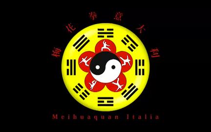 Meihuaquan live show