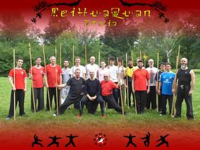 Ultimate Meihuaquan