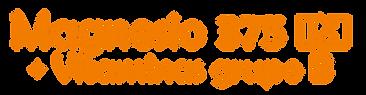 Logo Magnesio PH y Vitamina B.png