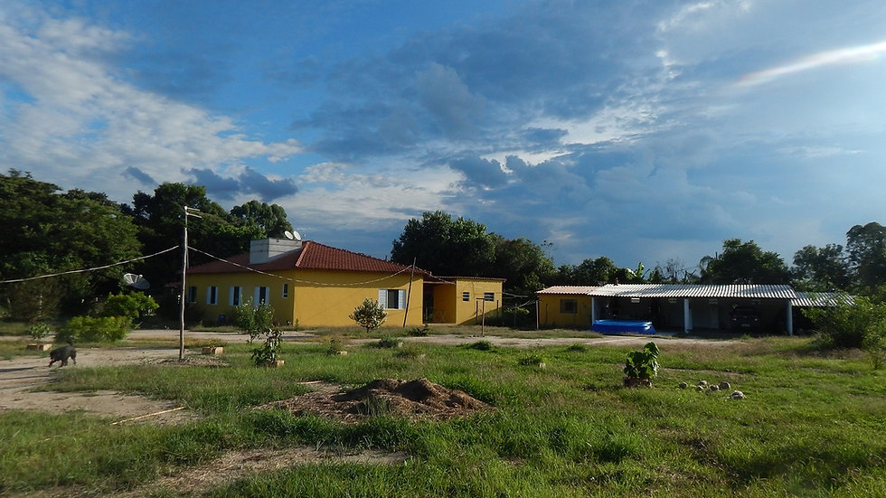 Fazenda Povoado Mata da Voadeira - Aguanil - MG