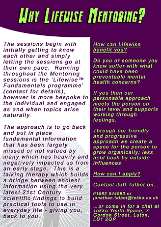 Mentoring project leaflet Back.png
