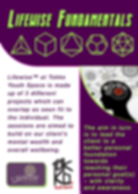 Fundamentals project leaflet Front.png